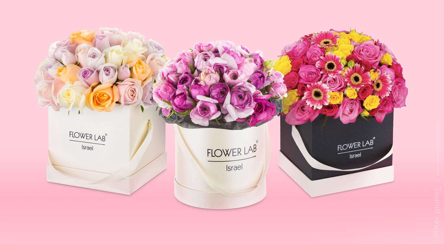 Flower arrangements in three boxes
