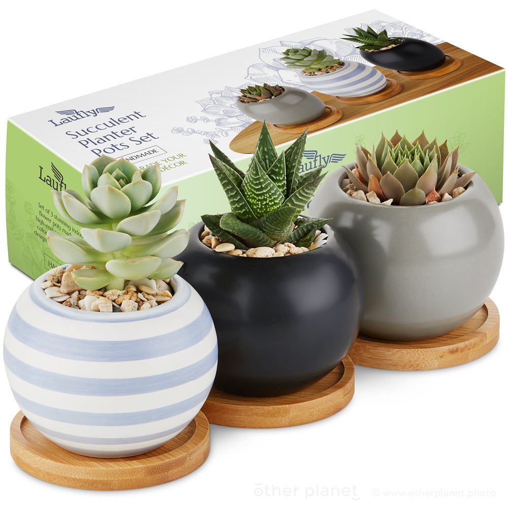 Succulent planters main photo on white background with retail box