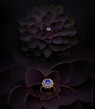 Jewelry arrangement sapphire ring on succulent in dark environment