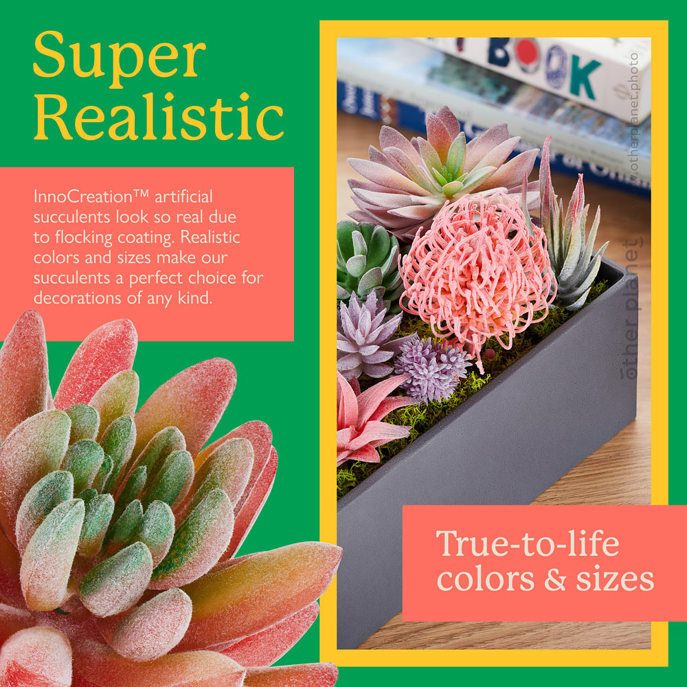 Amazon SmartImage for artificial succulents set with succulent closeup and lifestyle photo