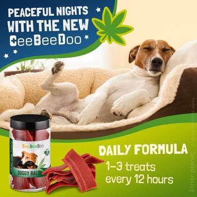 Amazon SmartImage with sleeping dog and dog treats packshot