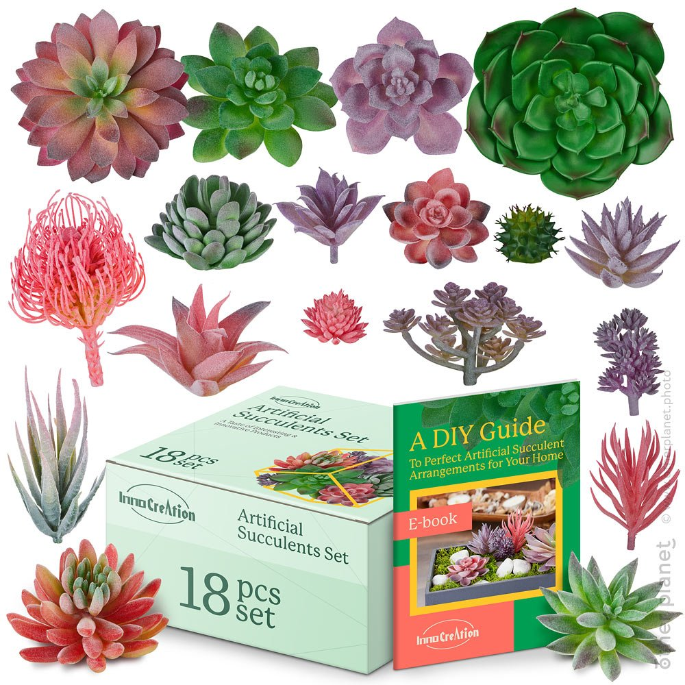 Artificial Succulents set image on white background with box and ebook